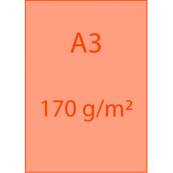 Affiches A3 170 g/m²